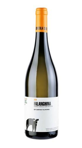 """""""Falanghina"""" Campania IGP San Salvatore 2019"""