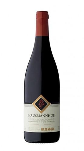 Pinot Nero 'Hausmannhof' Alto Adige/Sudtirol DOC Haderburg 2018