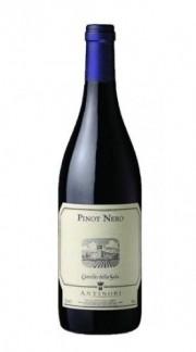 Pinot Nero Umbria IGT Castello della Sala Antinori 2015