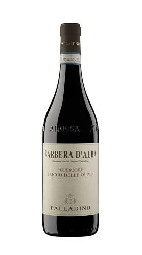 Barbera d'Alba DOC Superiore Bricco delle Olive Palladino 2018