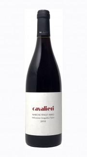 Pinot Nero Marche IGT Cavalieri 2016 MAGNUM