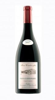 """Vigna Cantaghel Pinot Nero"" Trentino DOC Maso Cantanghel 2017"