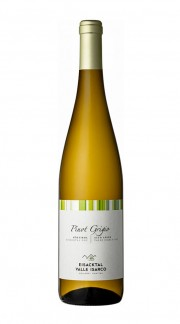 Pinot Grigio A.A. Valle Isarco DOC Cantina Valle Isarco 2020
