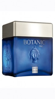 "Gin London Dry ""Botanic Ultra Premium"" Cubical Williams & Humbert 70 Cl"