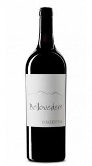 """Montepulciano d'Abruzzo Riserva DOC Terre dei Vestini """"Bellovedere"""" La Valentina 2013 75 Cl"""