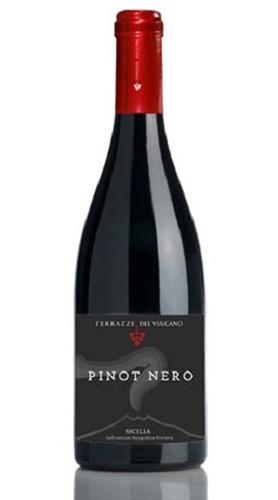 Sicilia Pinot Nero IGT Terrazze dell'Etna 2011