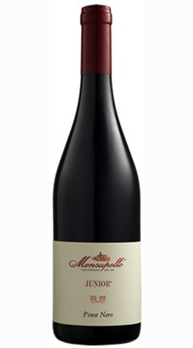 """junior"" Pinot Nero IGT Monsupello 2017"