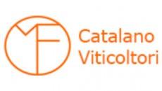 Catalano Viticoltori