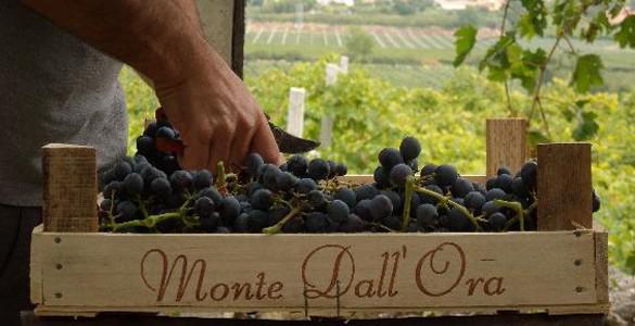 Monte Dall'Ora
