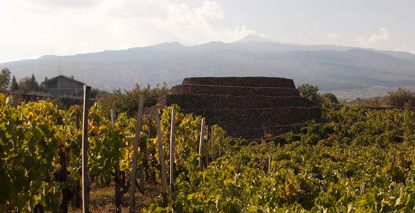 I Vigneri - Custodi delle Vigne dell'Etna