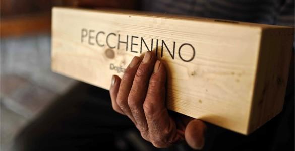 Pecchenino