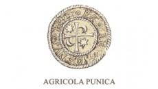 Agripunica