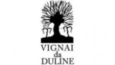 Vignai da Duline