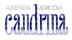 La Caudrina