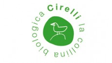 Cirelli