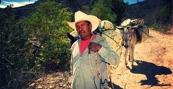 Mezcales Milagrito México